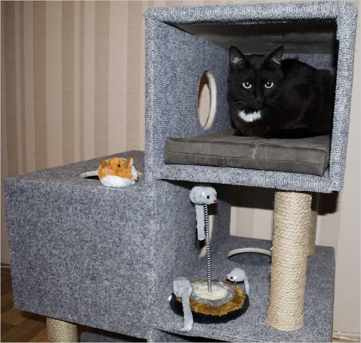 Как сделать домик для кошки своими руками