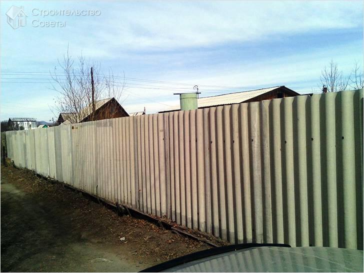 Забор из волнистого шифера на даче
