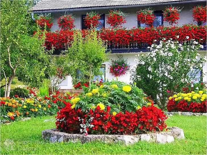 Деревянные цветники