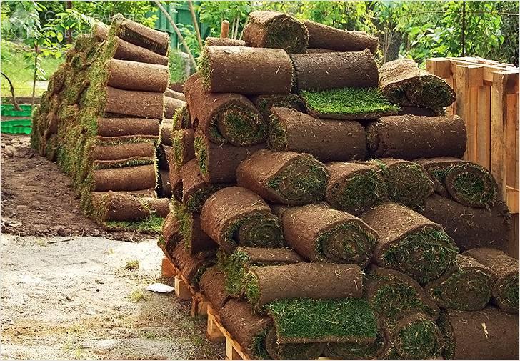 Изготовление рулонного газона